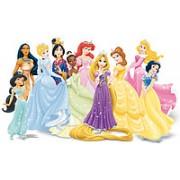 Принцессы и принцы Дисней / Disney Princess